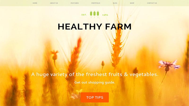 Organik Tarım Çiftlik Web Sitesi Örnekleri healty