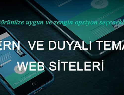 Web Sitesi Tasarımı Nasıl Olmalı ?